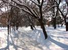 Petrovec Feb 2012 - 3