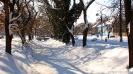 Petrovec Feb 2012 - 6